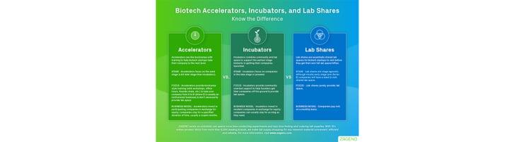 Biotech Startup Incubator vs. Accelerator vs. Lab Share Infographic